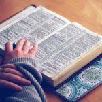 Il Vangelo è vita: il commento del Vangelo della Domenica